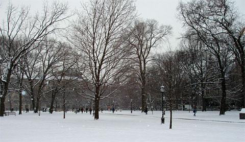 Main Quadrangles v zime