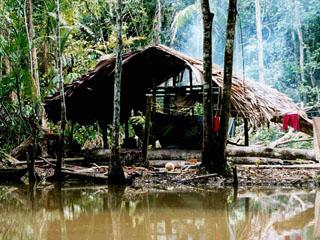 Venezuela - delta Orinoka