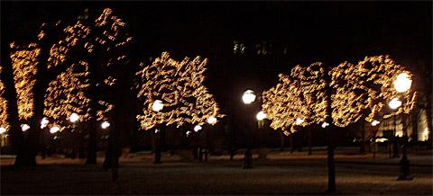 Main Quadrangles v noci